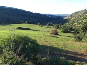 Trekking dell'Epifania - RG